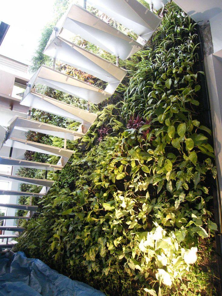 Living walls green walls and vertical gardens gardens for Living walls vertical gardens