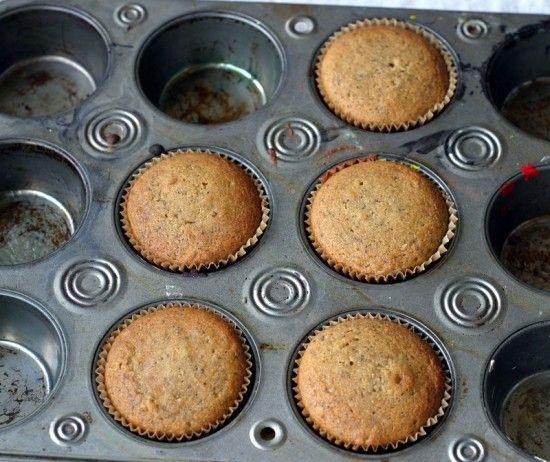 LEMON POPPY SEED MUFFINS (USING COCONUT FLOUR): Lemon Poppies Seeds, Breakfast, Seeds Muffins Coconut, Baking Sodas, Muffins Coconut Flour, Anti Candida Paleo, Lemon Poppy Seeds, Muffins Recipe, 10 Muffins