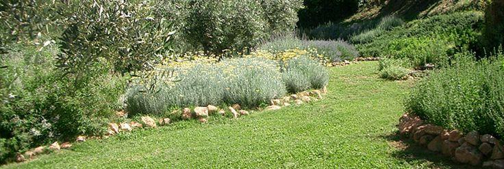 + 4 anys 5€ Parc de les Olors - Som una empresa productora i divulgadora de plantes aromàtiques, medicinals i culinaries.