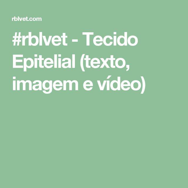 #rblvet - Tecido Epitelial (texto, imagem e vídeo)