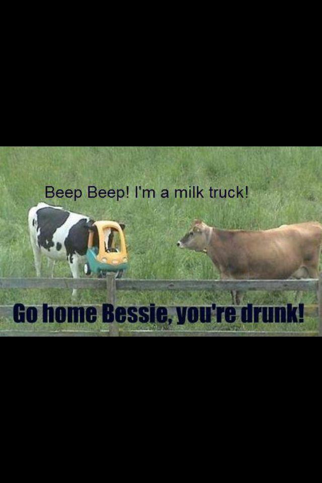 Go Home Bessie You Re Drunk