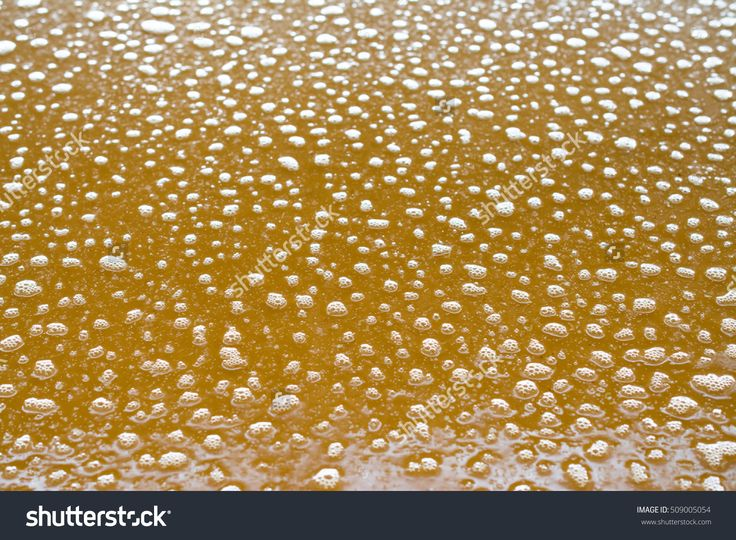 Must Fermentation For The Realization Of Tequila In Jalisco Wineries. 写真素材 509005054 : Shutterstock