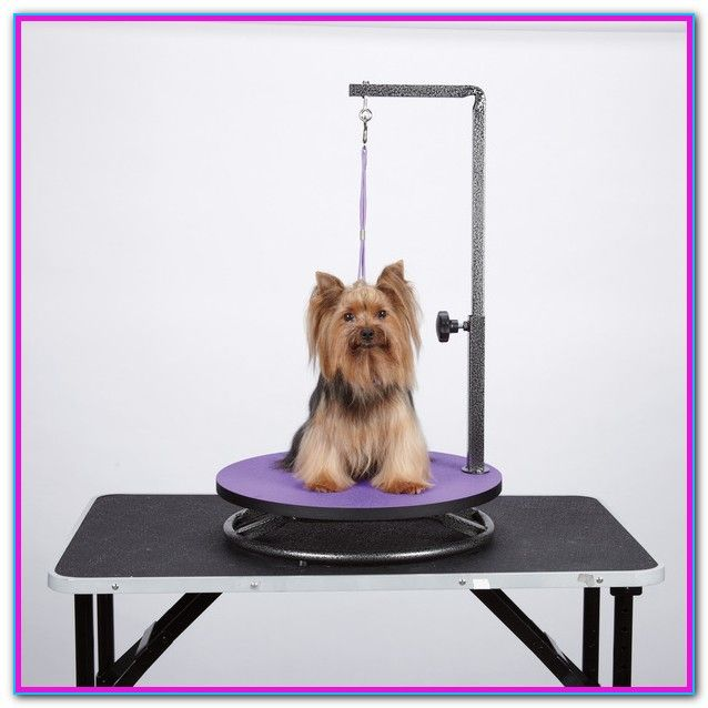 Dog Grooming Table For Sale Find Great Deals On Ebay For Pet Grooming Table In Dog Grooming Tables Sh Dog Grooming Supplies Pet Grooming Dog Grooming Salons