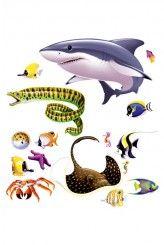 Décos à découper - poissons des mers