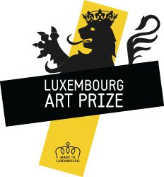 Prize for the emerging artist of the year