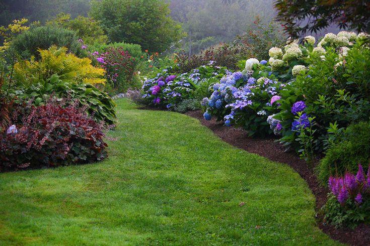 Beautiful light shade combo - Hydrangeas, astilbes, coral bells, hostas, ferns