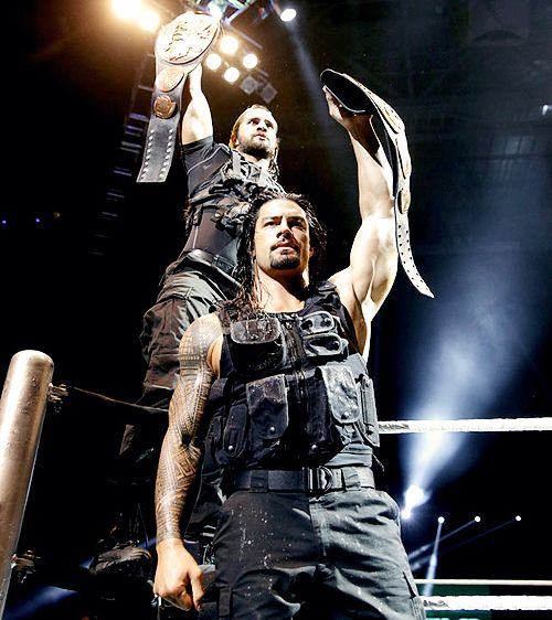 the shield wwe | Seth Rollins and Roman Reigns - The Shield (WWE) Photo (35260638 ...