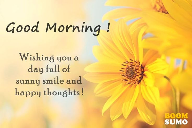 awesome Good Morning Quotes: Awesome Day Full Of Sunny Smile And Happy Thoughts