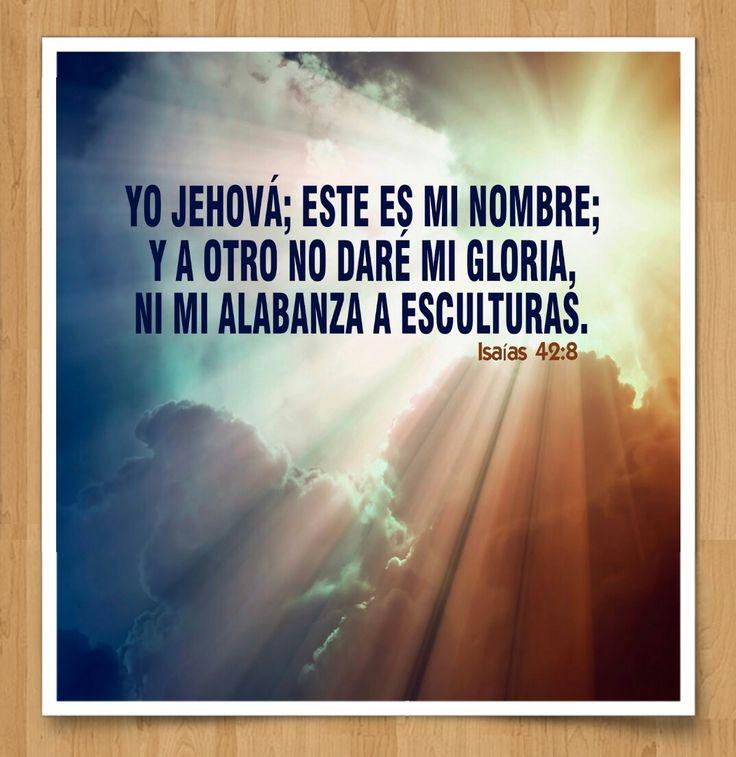 ISAIAS 42:8  #DiosTeAmaayPeleaporsusHijos...