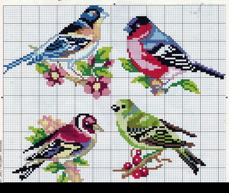 Oiseaux et autres.