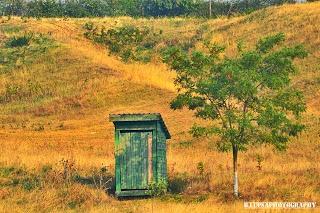 Real Ecologic toilet :)