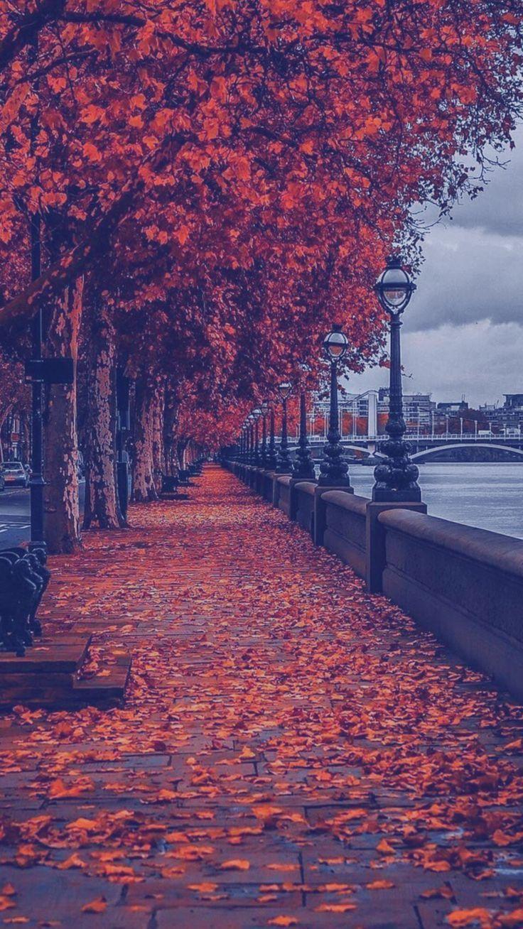 Dies ist London, Vereinigtes Königreich 🇬🇧 …