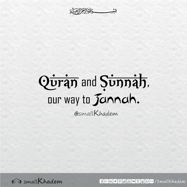 Quran and Sunnah, our way to Jannah. | Islamic Quotes | Small Khadem