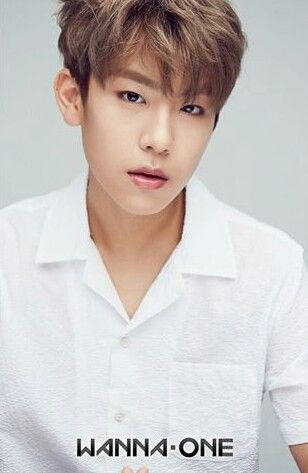 Wanna One - Park Woojin