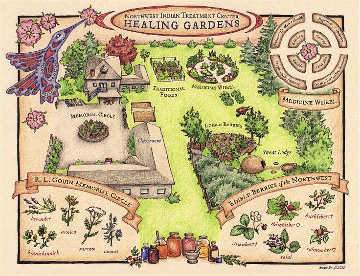 A garden plan for therapeutic horticulture that looks very appealing to me! I especially like the medicine wheel.