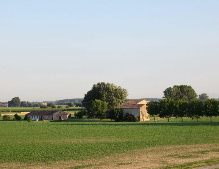 Oltrepò Mantovano, un progetto di storytelling (Corte Bertoia, San Siro, Mantova, Lombardia)