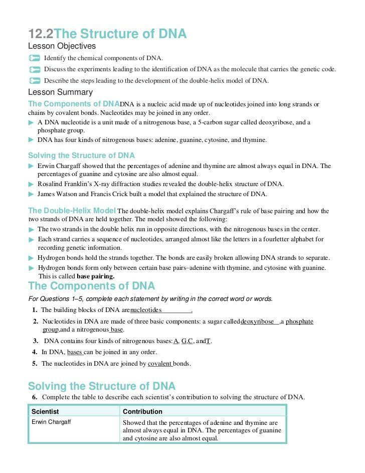 Dna Structure Worksheet Answer Key 122 the Structure Dna