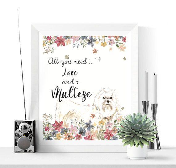 Maltese Art Maltese Wall Art Printable Dog Prints Etsy Printable Wall Art Printable Art Dog Print