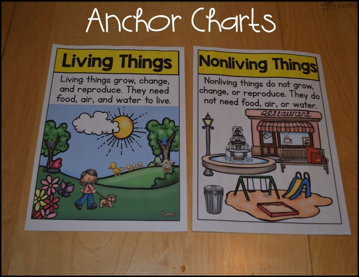 living and nonliving things anchor chart - Google Search