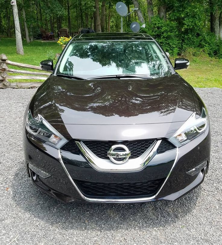 2017 Nissan Maxima Platinum in Bordeaux Black.  It reminds me of the color of Dr. Pepper.
