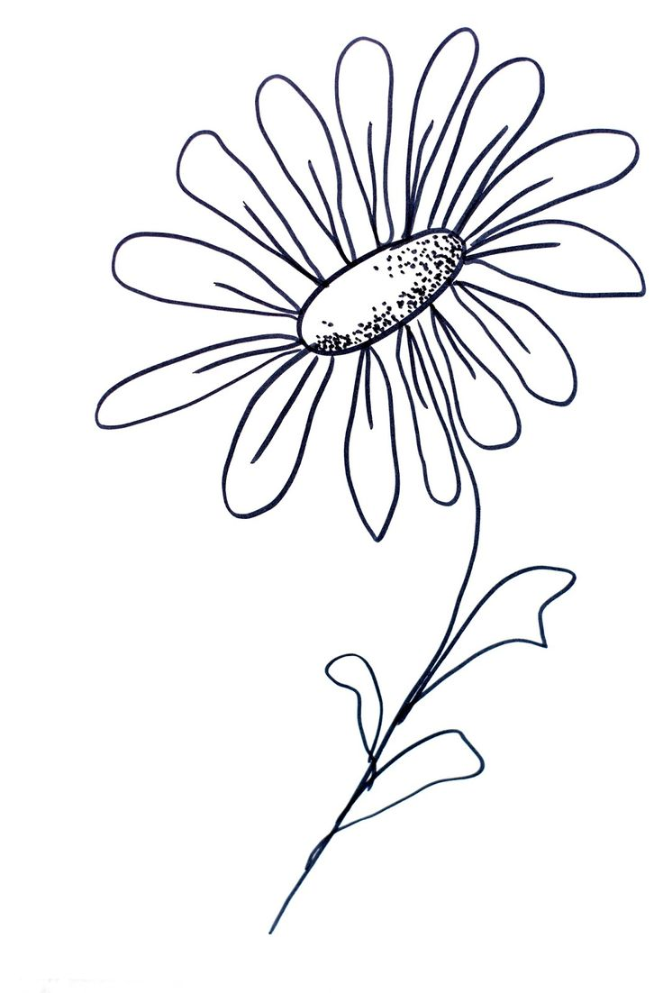 How To Draw Flowers 29