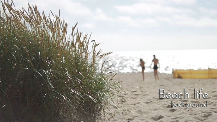 Grass on Sandy Beach with Sparkling Waves Video Background.