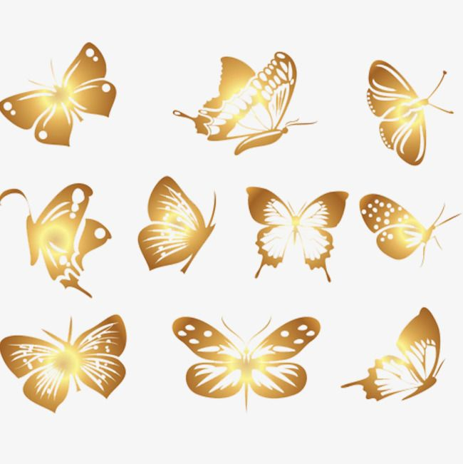 Beautiful Butterfly Butterfly Clipart Butterfly Golden Butterfly Png Transparent Clipart Image And Psd File For Free Download Butterfly Clip Art Butterflies Vector Butterfly Illustration