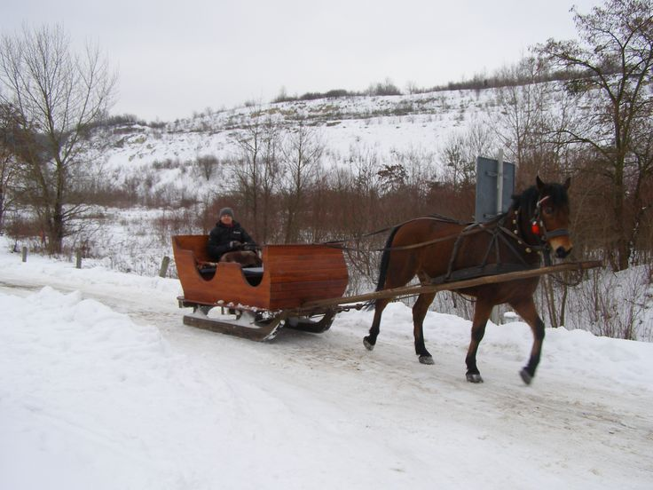 pin snow ride carriage - photo #10
