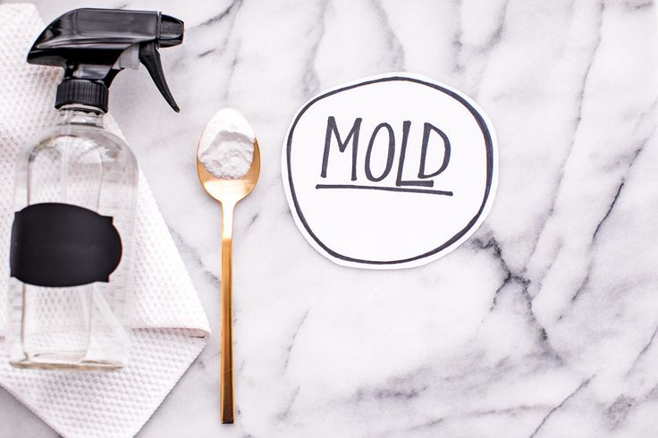 How To Get Rid Of Mold On Walls Without Bleach