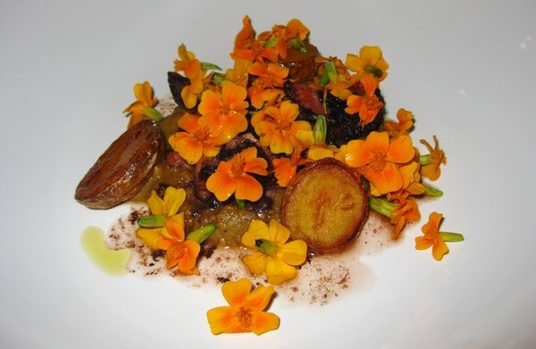Smoked octopus, baby potato, eggplant, marigold (9.16.11) | Yelp