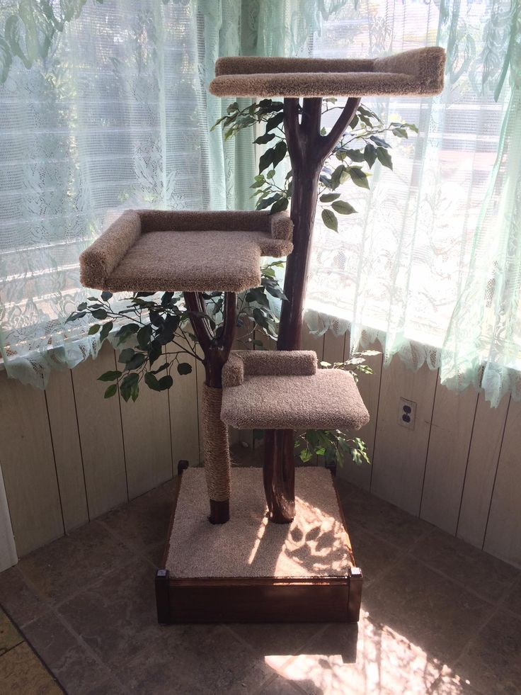 Wood Cat, Tree Furniture, Cat Trees, Real Wood