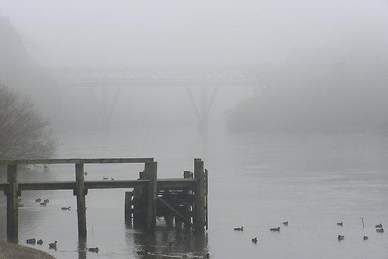 Waikato River  -one of my photos