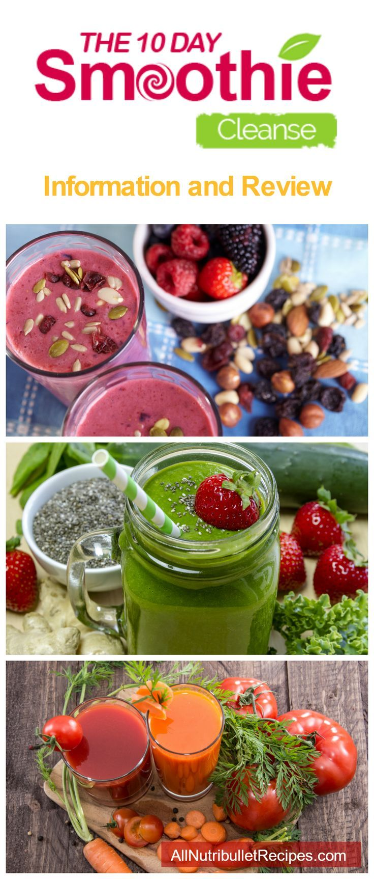 Learn about the popular 10 Day Smoothie Cleanse, a smoothie detox diet for fast and effective weight loss using real healthy food through easy to make healthy smoothie recipes.