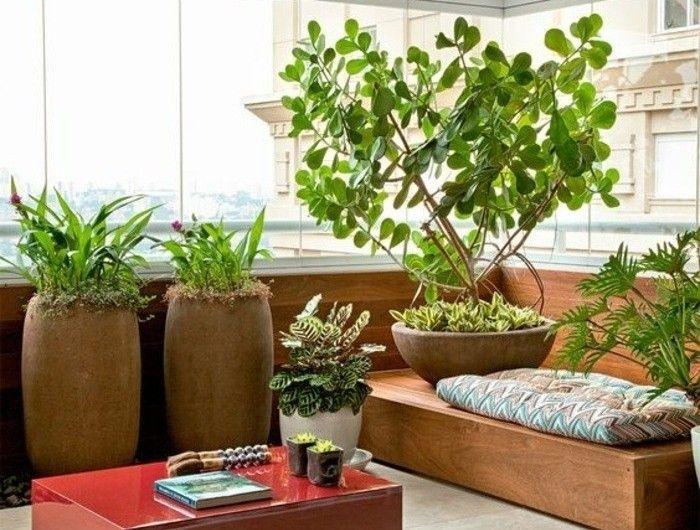 Ideen Balkon Sichtschutz Pflanzen Winterhart