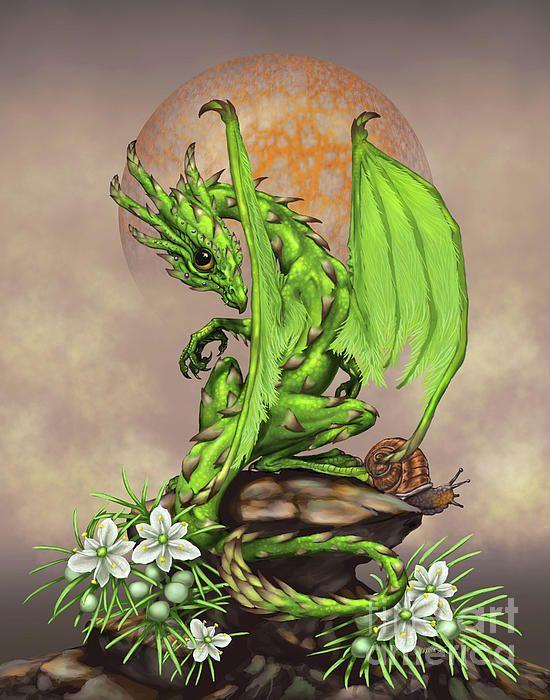 Asparagus Dragon Digital Art by Stanley Morrison
