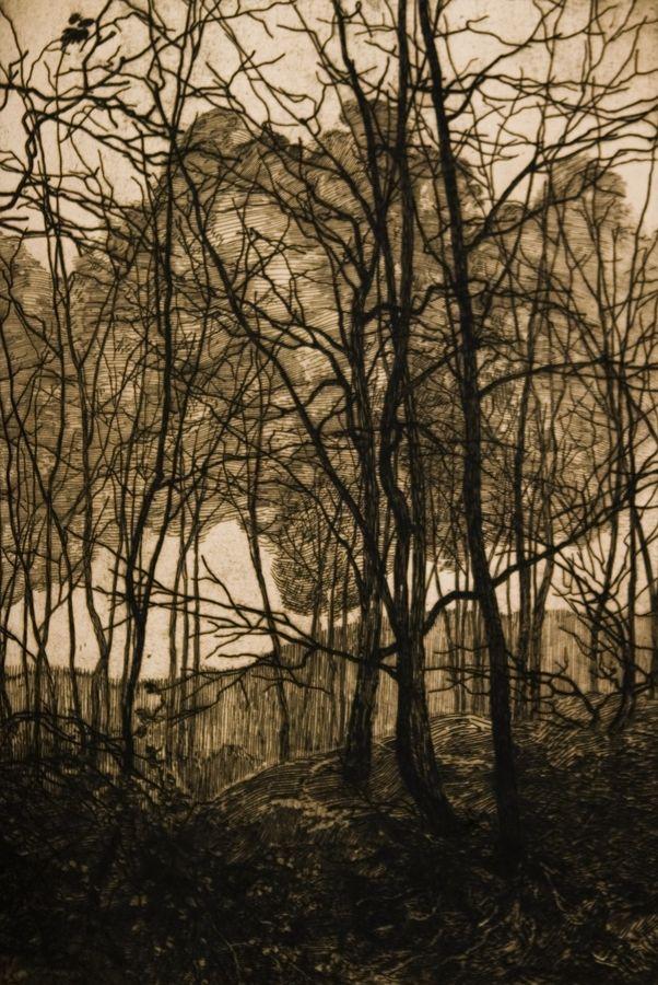 Vojtěch Preissig (Czech, 1873-1944). Forest. ca 1900. Etching on paper.