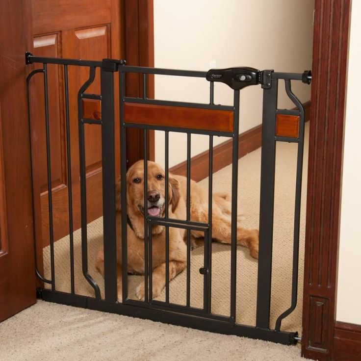1000 Ideas About Extra Wide Pet Gate On Pinterest Pet