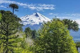 Parque Nacional Hornopiren Chile