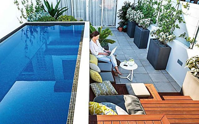the high life: a small rooftop garden with a plunge pool