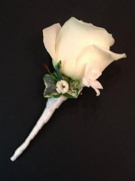 boutonniere: Akito Rose, Single Bloom of Hyacinth and Wax Flower with Diamonte detail with Ivy background neatly tied with satin ribbon.