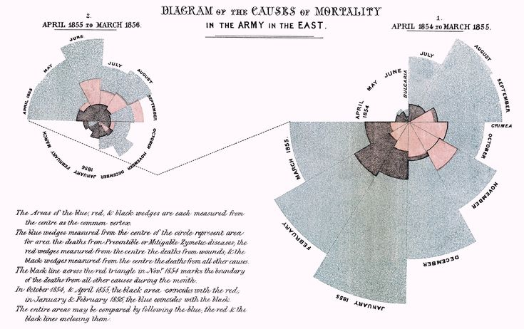 Florence Nightingale: A Pioneer of Inforgraphics