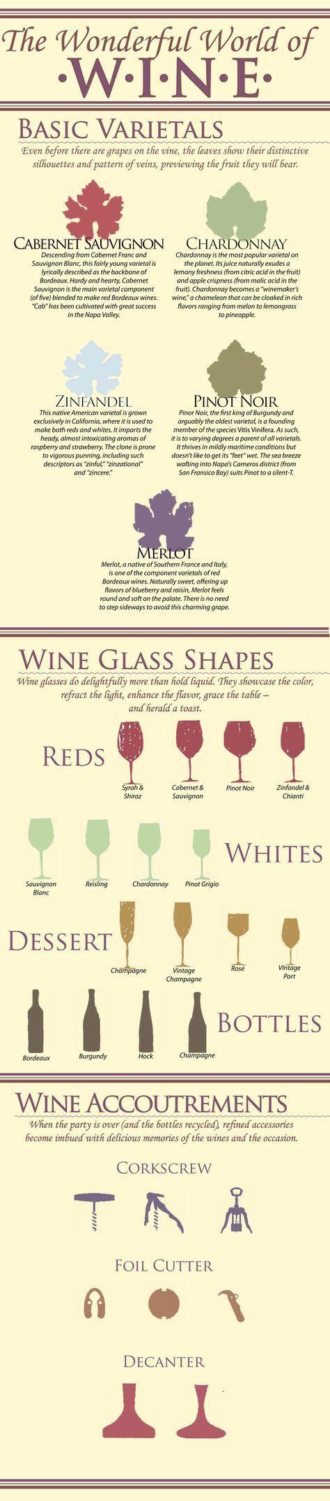 Wine basics tutorial - #wine #infographic #infographics {wine glass writer}