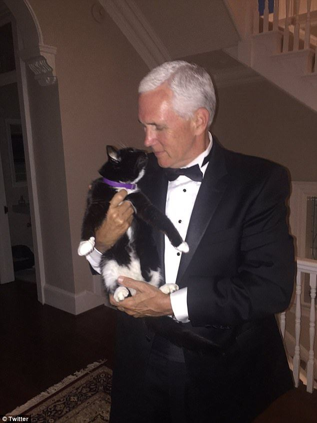 An aide to the vice president told CNN that Oreo was 13-years-old and extremely close with the youngest of Pence's children, Audrey, who is 23. The cat also had a special bond with the now vice president