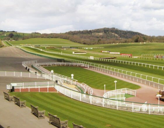 Discover the best horse racing tips from real experts. Learn how to win with info about races in Chelmsford, Newcastle, Taunton, Warwick.