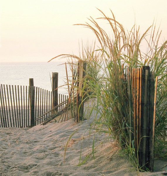 46 Best Images About Coastal On Pinterest