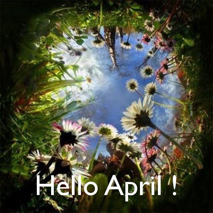 Jó reggelt legyen szép a napod!,Április1,Helló április!!,Jó éjszakát,szép álmokat!,Jó reggelt legyen szép a napod!,Jó reggelt legyen szép a napod!,Jó reggelt legyen szép a napod!,Jó éjszakát,szép álmokat!,Péntek 13!!,Jó reggelt legyen szép a napod!, - yulchee Blogja - Dsida Jenő, Babits Mihály,A nap idézete,A nap idézete/Lucien del Mar/,A nap verse,Ady Endre,Anthony de Mello,Anyáknapja,Az életről,Baranyi Ferenc,Bella István,Bényei József,Buddha,Csernus Imre,Dsida Jenő,Ébresztő bölcsességek…