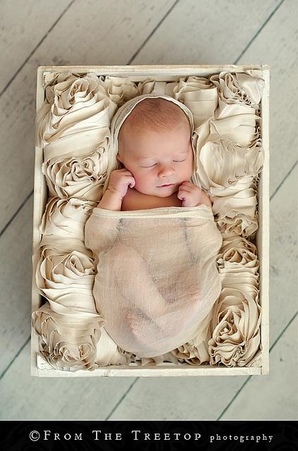 Tamara*BPhotos, Cutest Baby, Ideas, Newborns Pictures, Newborns Pics, Baby Pictures, Decor Pillows, Kids Clothing, Baby Photography
