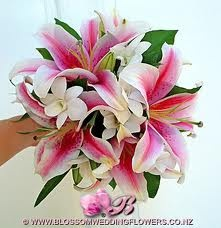 Google Image Result for http://www.asilayliving.com/wp-content/plugins/after-the-deadline/orchid-lilies-i2.jpg