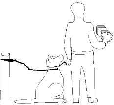 schutzhund dumbbell - Αναζήτηση Google