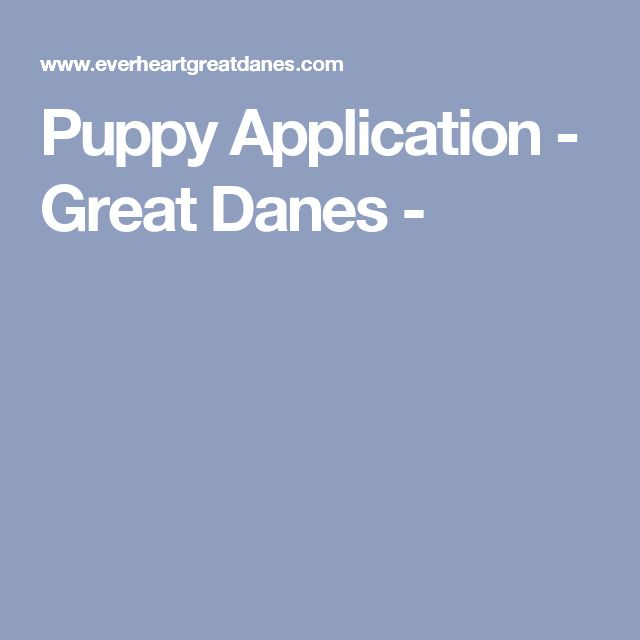 Puppy Application - Great Danes -